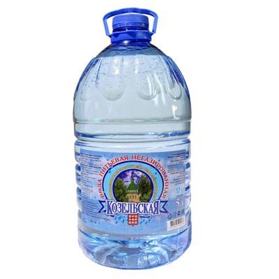 В-Вода 5л, Козельская, питьевая